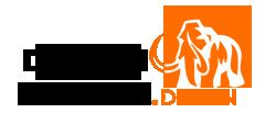 طراحی دکوراسیون ماموت